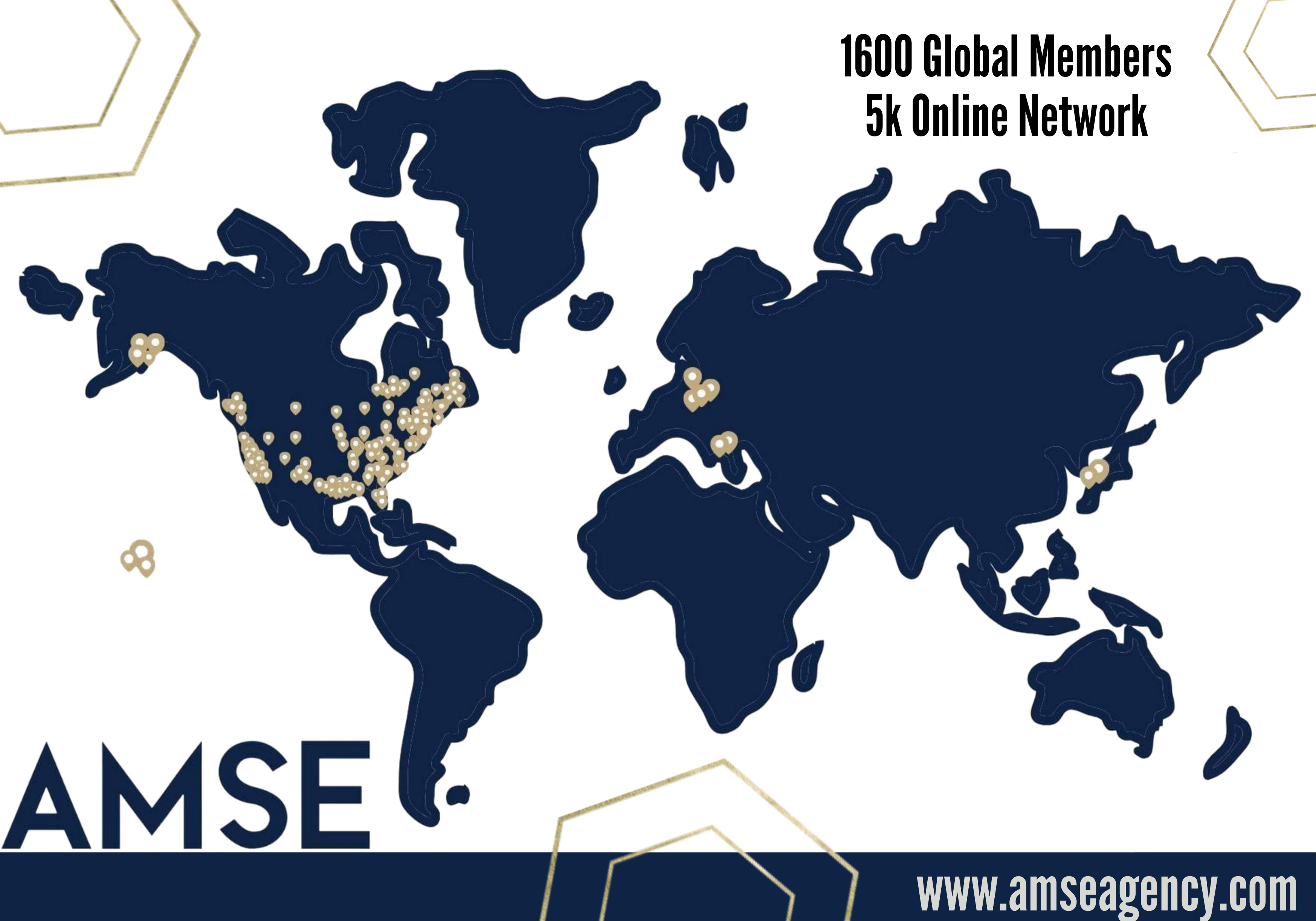 Global Members image for AMSE
